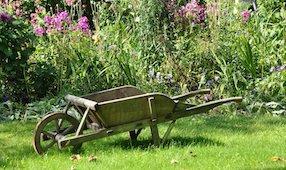jardin brouette